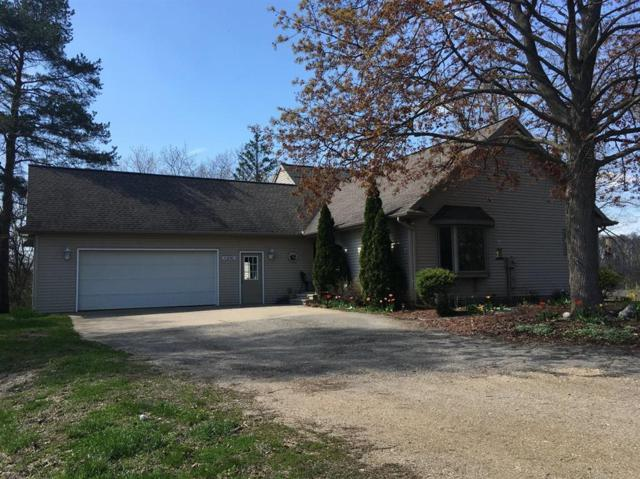 11290 Sharon Valley Road, NORVELL TWP, MI 49230 (#543265135) :: The Buckley Jolley Real Estate Team
