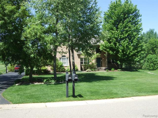 6901 Teluride Drive, White Lake Twp, MI 48383 (#219042276) :: The Buckley Jolley Real Estate Team