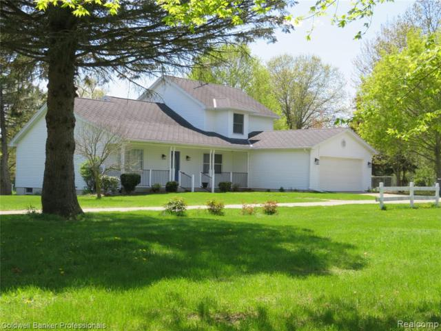 12190 Raelyn Hills Drive, Perry Twp, MI 48872 (#219043327) :: The Buckley Jolley Real Estate Team