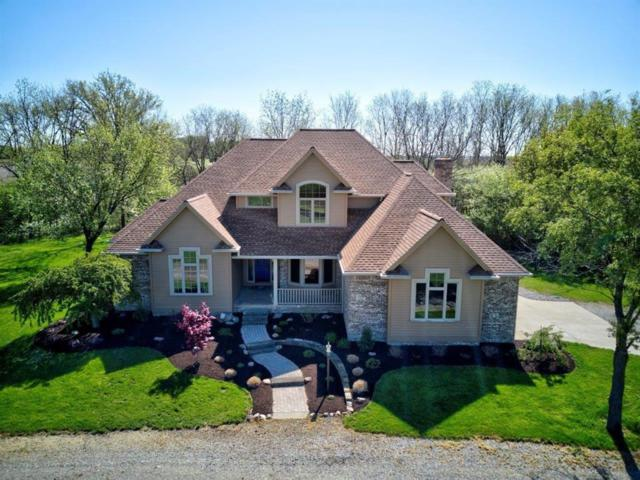 7581 N Britton Highway, Ridgeway, MI 49229 (#543265383) :: Team DeYonker