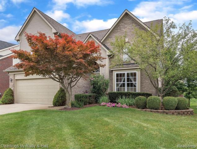16401 Mulberry Way, Northville Twp, MI 48168 (#219045935) :: The Buckley Jolley Real Estate Team