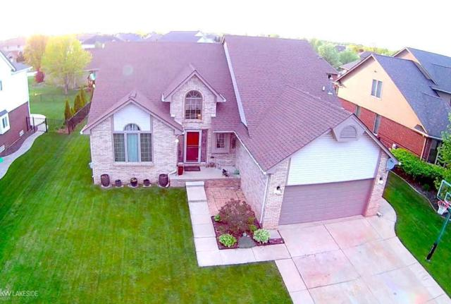 50493 Steeh Dr, Macomb Twp, MI 48044 (#58031380631) :: The Alex Nugent Team   Real Estate One