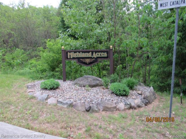 15 Catalpa Ridge Drive, Holly Twp, MI 48442 (#219053658) :: The Buckley Jolley Real Estate Team