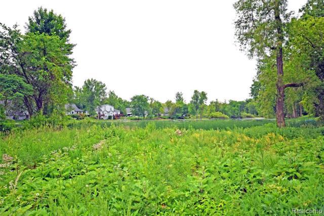 0 Crane Road, Fenton Twp, MI 48430 (#219057148) :: The Buckley Jolley Real Estate Team