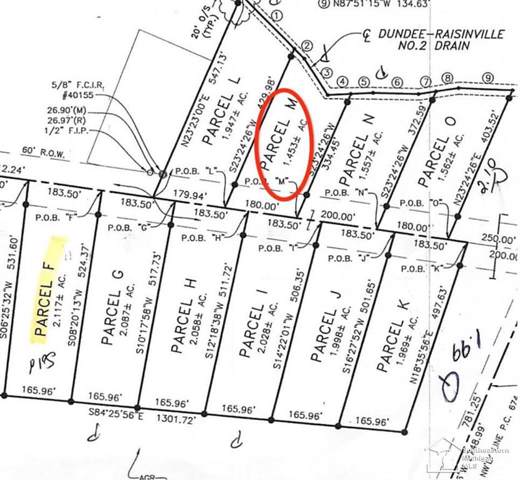 11080 S Custer, Raisinville Twp, MI 48161 (#57031383866) :: Novak & Associates