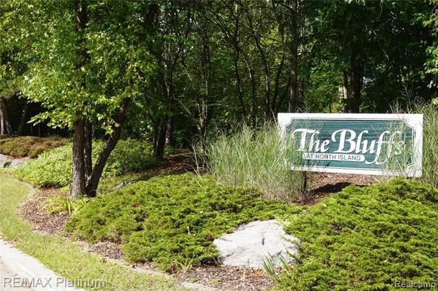 9036 N Island Drive, Flushing Twp, MI 48433 (#219059082) :: The Buckley Jolley Real Estate Team