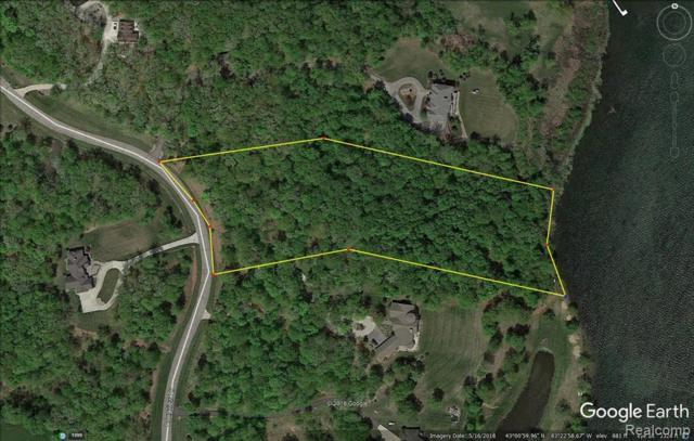 6 Longview Drive, Elba Twp, MI 48446 (#219062189) :: RE/MAX Classic