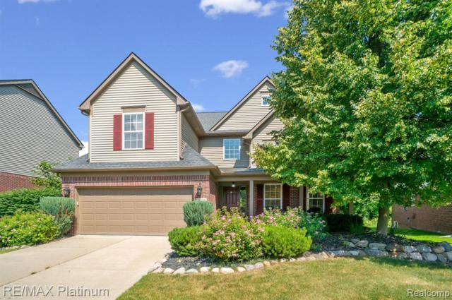 50088 Venice Court, Northville Twp, MI 48168 (#219062925) :: The Buckley Jolley Real Estate Team