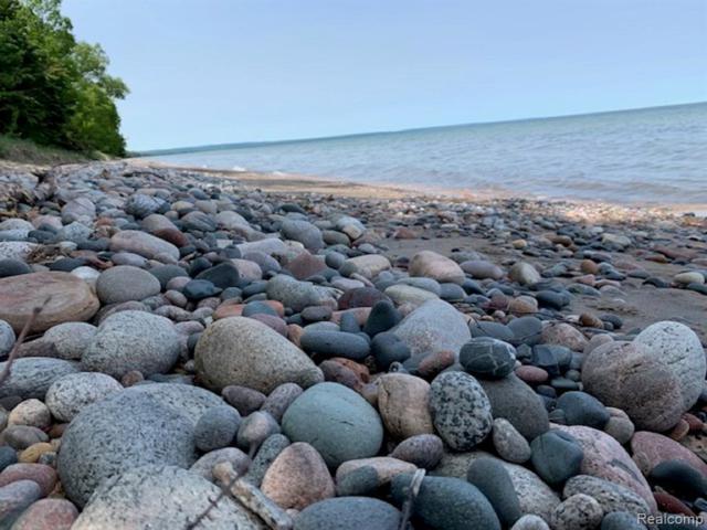 V/L W Lakeshore Drive, Bay Mills Twp, MI 49715 (#219065975) :: Alan Brown Group