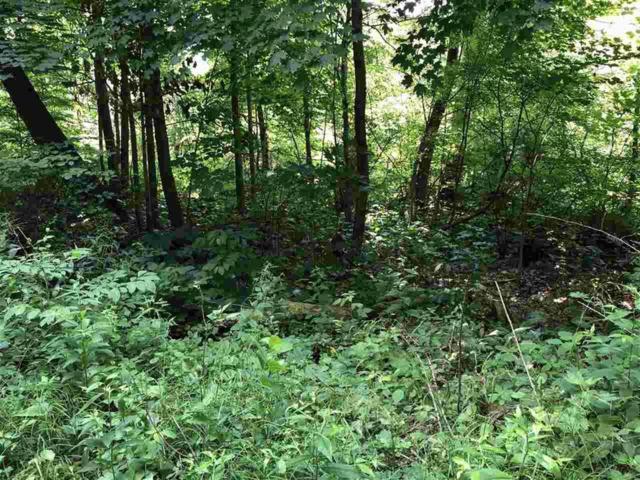 Log Cabin Trail, White Lake Twp, MI 48386 (#5031386395) :: The Buckley Jolley Real Estate Team
