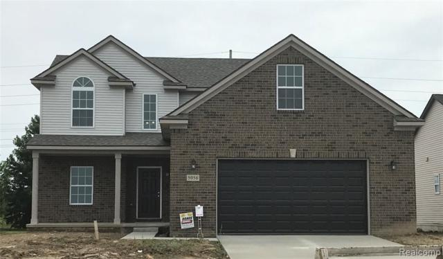 5056 Westminster Drive, Dundee Vlg, MI 48131 (#219072284) :: The Buckley Jolley Real Estate Team