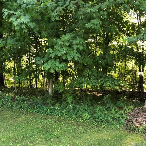 00 W Coon Lake Road, Iosco Twp, MI 48843 (#219073816) :: The Alex Nugent Team | Real Estate One