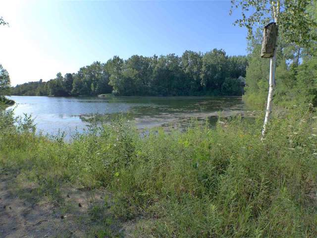 0 Twin Lakes Drive, Forest Twp, MI 48463 (#5031388567) :: The Buckley Jolley Real Estate Team