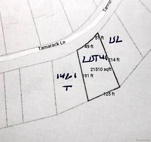 00 Tamarack, Oakland Twp, MI 48363 (#219081567) :: GK Real Estate Team