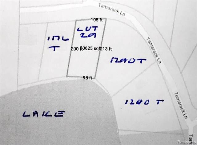 00 Tamarack, Oakland Twp, MI 48363 (#219081627) :: The Buckley Jolley Real Estate Team
