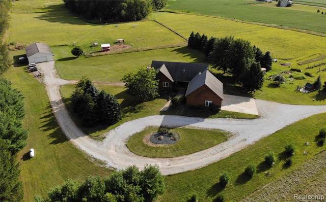 6923 Lovejoy Road, Conway Twp, MI 48418 (#219084477) :: The Buckley Jolley Real Estate Team