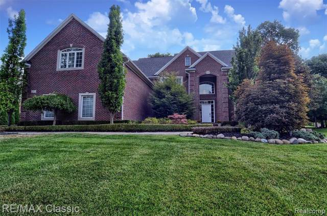 23753 Point O Woods Court, Lyon Twp, MI 48178 (#219088020) :: The Buckley Jolley Real Estate Team