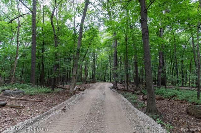 1570 Lone Tree Road, Highland Twp, MI 48357 (MLS #219091899) :: The John Wentworth Group