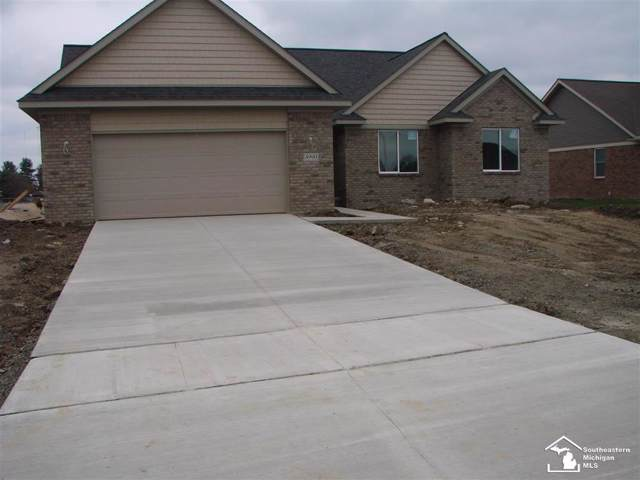 4990 Skylark, Monroe Twp, MI 48161 (#57031394526) :: Alan Brown Group