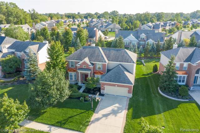 16371 Johnson Creek Drive, Northville Twp, MI 48168 (#219096422) :: Duneske Real Estate Advisors