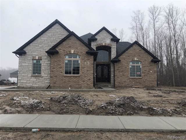 8904 Springer Lane, Shelby Twp, MI 48315 (#219105285) :: The Buckley Jolley Real Estate Team