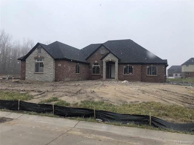 54551 Deadwood Lane, Shelby Twp, MI 48315 (#219105288) :: The Buckley Jolley Real Estate Team