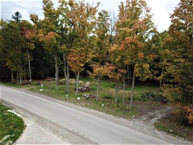 000 Mcclements Rd. Parcel D, Brighton, MI 48114 (#219105673) :: The Mulvihill Group