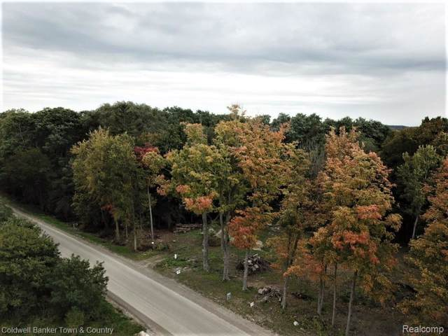 000 Mcclements Rd. Parcel C, Brighton, MI 48114 (#219105727) :: The Mulvihill Group