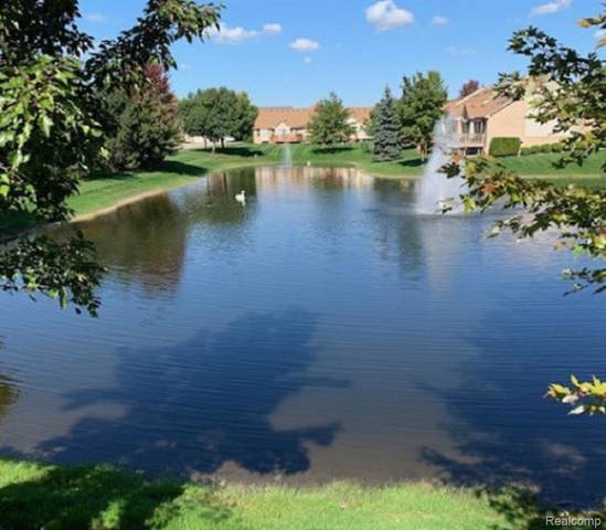30111 Indianwood Drive, Chesterfield Twp, MI 48047 (#219106909) :: The Mulvihill Group