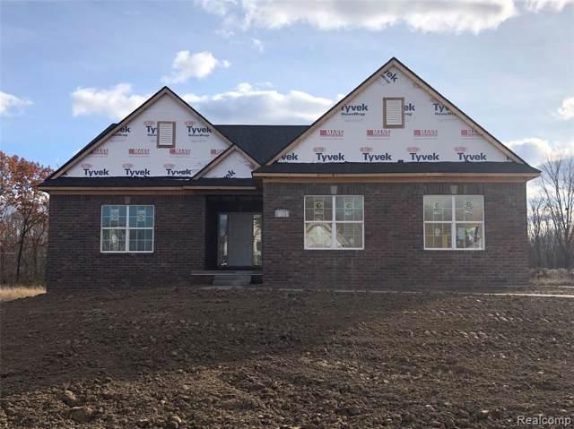 59375 Deer Haven Drive, Lyon Twp, MI 48178 (#219113755) :: The Buckley Jolley Real Estate Team