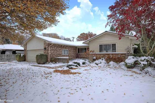 18926 Alpha Ct., Clinton Twp, MI 48036 (#58050000290) :: Team Sanford