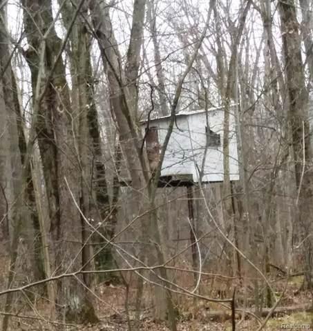 00 Sheridan Road, Vassar Twp, MI 48768 (#219118216) :: Springview Realty