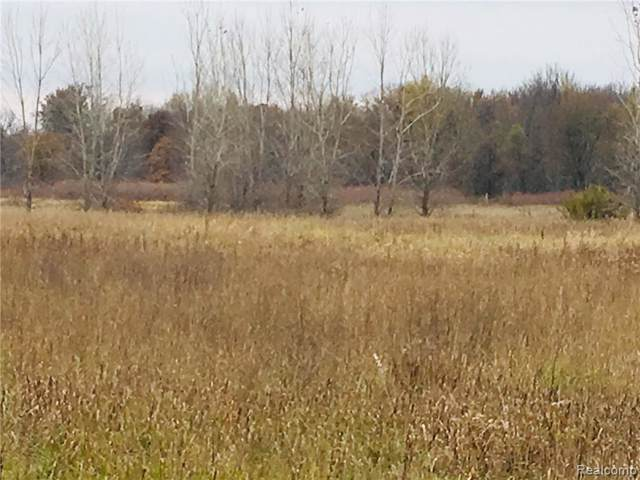 PARCEL D Sherwood Road, Conway Twp, MI 48836 (#219118696) :: The Buckley Jolley Real Estate Team
