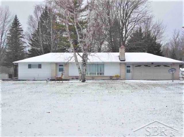 1540 W Sanilac, Indianfields Twp, MI 48723 (#61050001124) :: RE/MAX Nexus