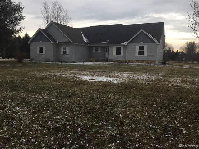6594 Mill Creek Trail Road, Imlay City, MI 48444 (#2200002553) :: The Buckley Jolley Real Estate Team