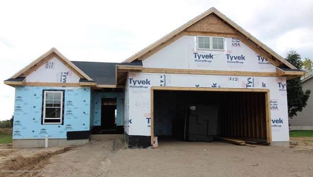 4137 Keepsake Lane, Watertown Twp, MI 48906 (#630000243637) :: The Alex Nugent Team | Real Estate One