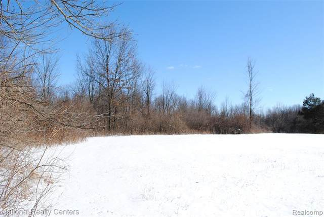 00 Ray Rd, Addison Twp, MI 48370 (#2200011905) :: The Mulvihill Group