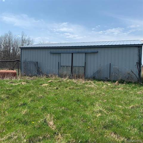 8104 Hollow Corners Road, Almont Twp, MI 48003 (#2200028559) :: The Mulvihill Group