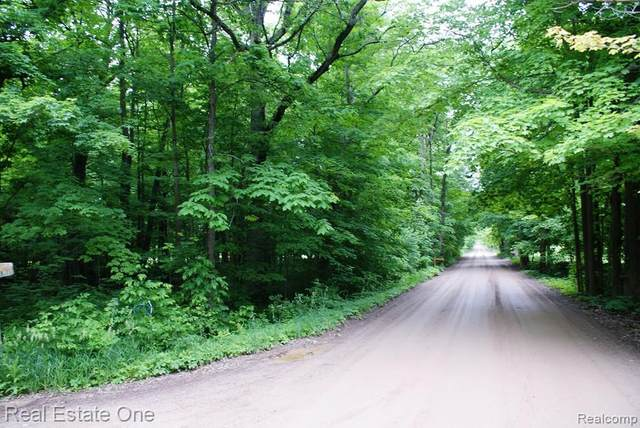 Lot C Darlene Drive, Hadley Twp, MI 48462 (#2200033947) :: RE/MAX Nexus