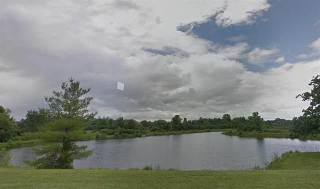 7040 Wapiti Way, Pittsfield, MI 48176 (#543273314) :: BestMichiganHouses.com
