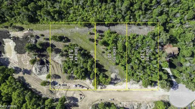 000 Hitchings Lot G, Fort Gratiot, MI 48059 (MLS #58050015620) :: The Toth Team