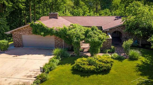 6728 N River, Tittabawassee Twp, MI 48623 (#61050016452) :: The Mulvihill Group