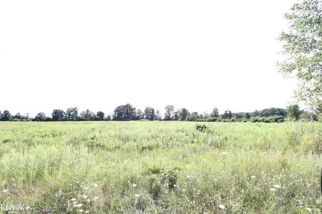 000 Windmill Ln, Imlay City, MI 48444 (MLS #58050018887) :: The Toth Team