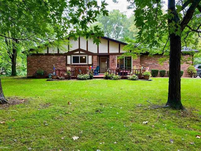 50761 Bower Ct, Chesterfield Twp, MI 48047 (#58050021475) :: The BK Agency