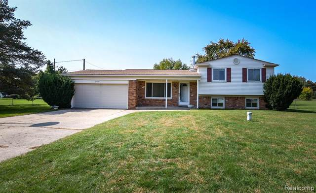 6019 Mary Sue Street, Independence Twp, MI 48346 (#2200080029) :: The BK Agency