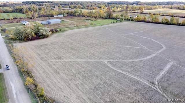 000 Hill Road, Riley Twp, MI 48041 (#2200083018) :: Duneske Real Estate Advisors