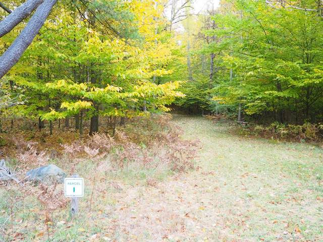 Parcel I (Off) Kerry Road, Manistee Twp, MI 49660 (#67019058077) :: Real Estate For A CAUSE