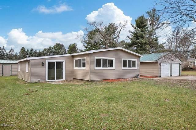 11667 Podunk Road NE, Oakfield Twp, MI 48838 (#72020048371) :: The Alex Nugent Team | Real Estate One