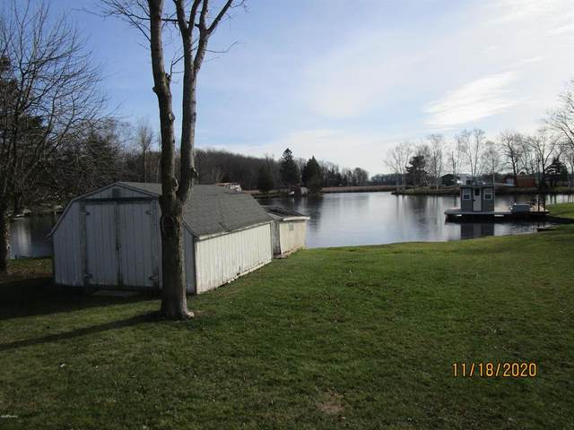 6391 Lost Lake Road, Martiny Twp, MI 49305 (#72020048118) :: Robert E Smith Realty