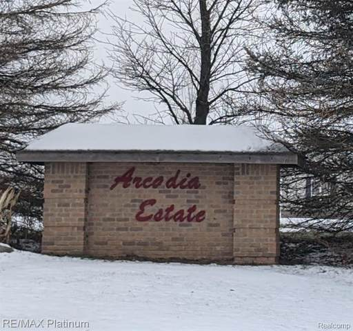 2 Adelines (Lot/Unit 13) Way, Iosco Twp, MI 48836 (#2210001121) :: Novak & Associates